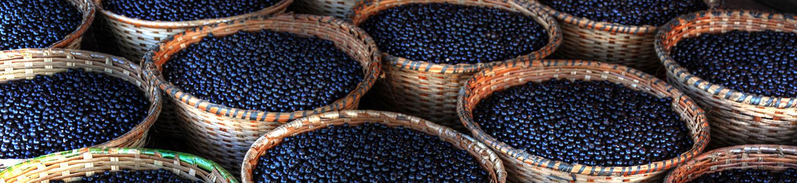 acai pulber vitamiinid ja mineraalained